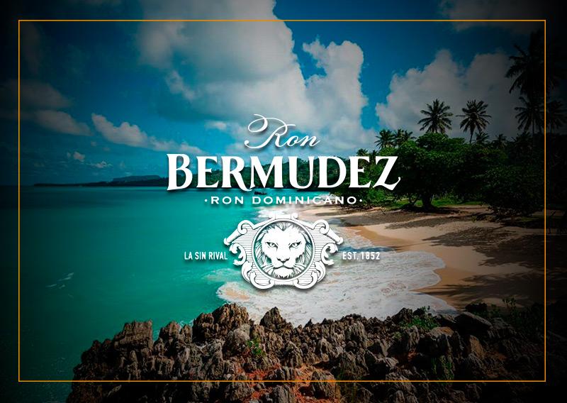 Ron Bermudez